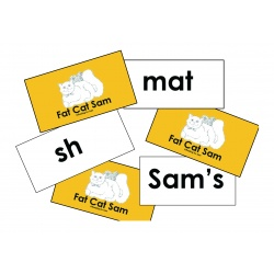 Fat Cat Sam Word Cards